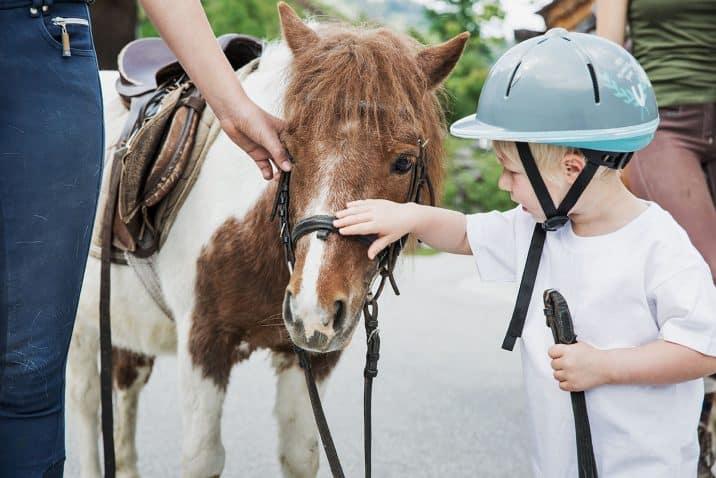 Holzlebn pony riding
